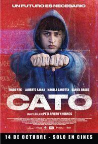 CATO - 2D CAST