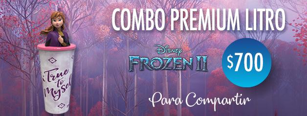 Combo Premium Frozen 2 Litro