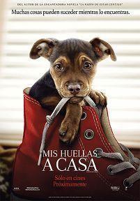 Poster de:1 MIS HUELLAS A CASA